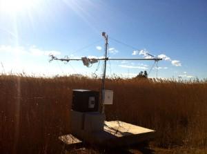 IC3-CAT - picture Ebre River Delta Station 4